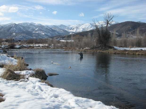 Early Season Fly Fishing in Utah by Brandon Tillotson